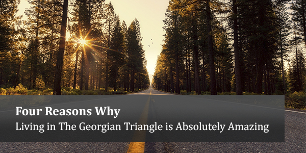 Four Reasons Why Living in The Georgian Triangle is Absolutely Amazing